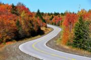 Winding Road Posters - Autumn along the Highland Scenic Highway Poster by Thomas R Fletcher