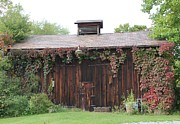 Donna Bosela - Autumn Antique Barn #2