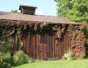 Donna Bosela - Autumn Antique Barn #3