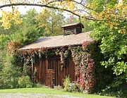 Donna Bosela - Autumn Antique Barn #4