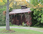 Donna Bosela - Autumn Antique Barn