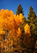 Mick Burkey - Autumn Approaching