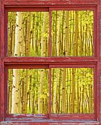 Picture Window Frame Photos Art - Autumn Aspen Trees Red Rustic Picture Window Frame Photos Fine A by James BO  Insogna