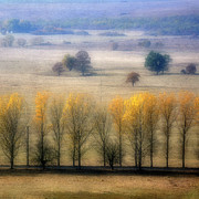 Romania Photo Prints - Autumn At Blumenthal Print by Old&timer Imagery