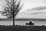 Joseph Duba Art - Autumn at Canandaigua Lake 2010 by Joseph Duba