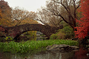 Gapstow Bridge Framed Prints - Autumn at Gapstow Bridge Framed Print by Cornelis Verwaal
