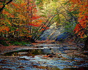 Superb Framed Prints - Autumn at its Best Framed Print by Robert Harmon