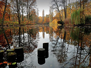 Pole Prints - Autumn At Lake Print by Bernd Schunack