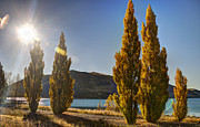 Aotearoa Art - Autumn at Lake Tekapo by Andreas Hartmann