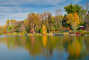 Luba Citrin - Autumn at Mill Pond Park