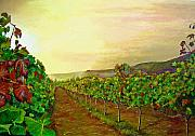 Grape Vineyard Painting Framed Prints - Autumn at Steenberg Framed Print by Michael Durst