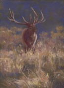 Colorado Wildlife Pastels Framed Prints - Autumn Attitude Framed Print by Grace Goodson