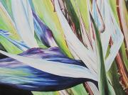 Bird Of Paradise Flower Painting Framed Prints - Autumn Framed Print by Barbara Eberhart