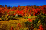Old Barn Posters - Autumn Barn Poster by Emily Stauring