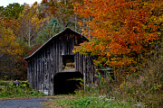 Tom Carriker - Autumn Barn