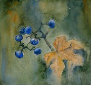 Tania Vasylenko - Autumn Berries
