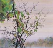 Water Tapestries - Textiles Prints - Autumn Birch by Sand Creek Print by Carolyn Doe