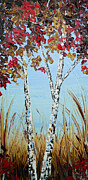 Artist Christine Krainock Framed Prints - Autumn Birch Framed Print by Christine Krainock