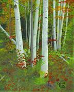 Laurel Ellis - Autumn Birches