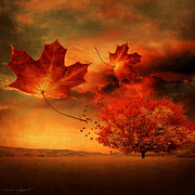 Red Maple Leaves Posters - Autumn Blaze Poster by Lourry Legarde