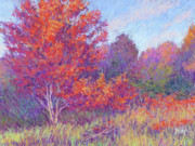 Autumn Trees Pastels Framed Prints - Autumn Blaze Framed Print by Michael Camp