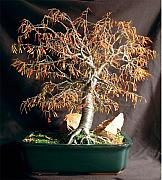 Sal Villano Art - Autumn Bonsai - Wire Tree Sculpture by Sal Villano