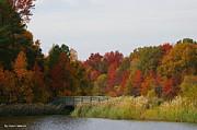 Tannis  Baldwin - Autumn bridge