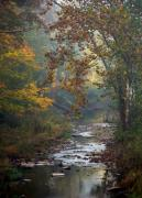 Colors Of Autumn Posters - Autumn by the Creek Poster by Elsa Marie Santoro