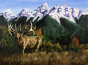 Antler Paintings - Autumn Caller  by John  Tukey