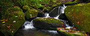 Smokey Mountains Prints - Autumn Cascades II Print by Ryan Heffron