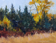 MaryAnn Cleary - Autumn Color