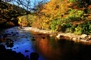 Williams Prints - Autumn Color Williams River Print by Thomas R Fletcher