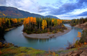 Scenery Digital Art - Autumn colors along Tanzilla River in Northern British Columbia by Mark Duffy