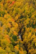 Aerial Photos Prints - Autumn Colour And Waterfalls, Cape Print by John Sylvester