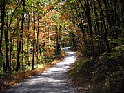Dirt Roads Photos - Autumn Country lane by David Dehner
