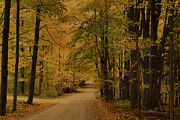 Autumn Country Road Posters - Autumn Country Road Poster by Deborah Benoit