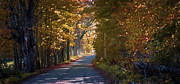 Vermont Fall Foliage Framed Prints - Autumn Country Road - oil Framed Print by Edward Fielding