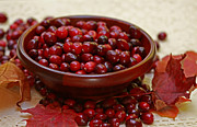 Wooden Bowl Prints - Autumn Cranberry Fest Print by Inspired Nature Photography By Shelley Myke