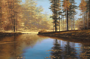 Tall Trees Originals - Autumn Creek by Diane Romanello