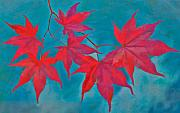 Autumn Leaf On Water Metal Prints - Autumn Crimson Metal Print by William Jobes