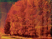 Autumn Trees Prints - Autumn Days Print by Linde Townsend