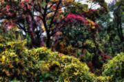 Fall Foliage Digital Art - Autumn Daze by Jeff Breiman