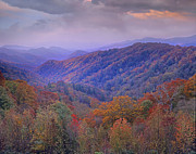 Autumn Deciduous Forest Great Smoky Print by Tim Fitzharris