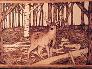 Woodburn Pyrography Framed Prints - Autumn Deer Framed Print by Andrew Siecienski