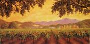 Napa Valley Vineyard Paintings - Autumn Escape by Patrick ORourke