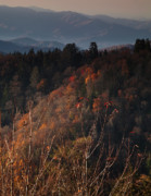 Smokies Prints - Autumn Evening in the Smokies Print by Andrew Soundarajan