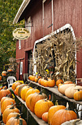 Farm Stand Photo Prints - Autumn Farm Stand  Print by John Greim