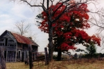 CGHepburn Scenic Photos - Autumn Farmhouse