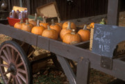Farmstand Framed Prints - Autumn Farmstand Framed Print by John Burk