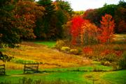 Photos Of Autumn Digital Art - Autumn Field by William Carroll